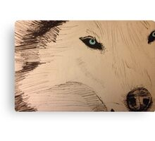 White Wolf with Blue Eyes Canvas Print