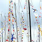 Mass of Masts by Lucy Hollis