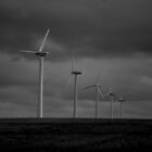 Wind turbines by Phil Whiting