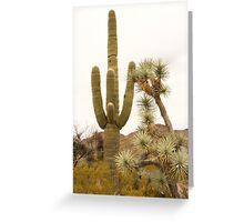 Along Alamo Road, AZ Greeting Card