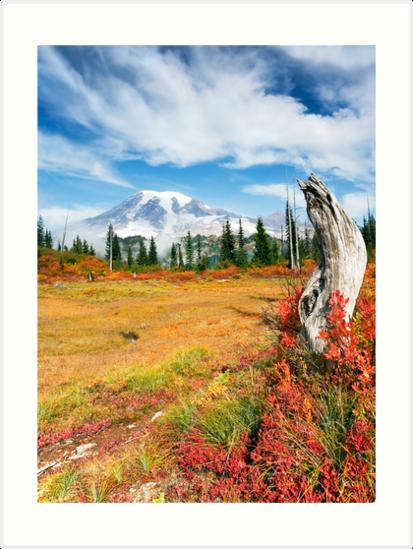 Autumn Majesty by DawsonImages