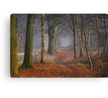 Strolling through dreamland Canvas Print