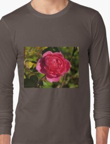 Full Bloom Fuchsia Colored Rose  (1430118782VA) T-Shirt