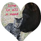 Love is all u need by Robin D. Overacre