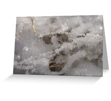Whiteness of Snow!! Greeting Card