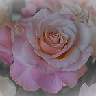 rose in pastel by Nicole W.