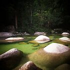 Mossman Gorge by Annie Jones