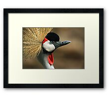 Proudly Crested Framed Print