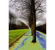 Avenue Photographic Print