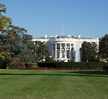 The White House by Anne Scantlebury