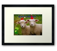 Merry Christmas - Lambs - NZ Framed Print