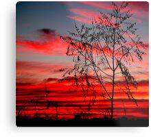 Templestowe Sunset Metal Print