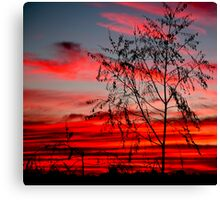Templestowe Sunset Canvas Print