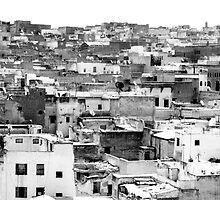 Fez Cityscape, Morocco by noddybuns