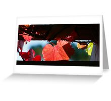 Grape Leaves In Autumn Greeting Card