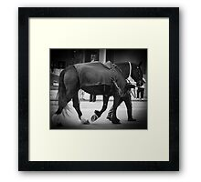 Shadow Rider Framed Print