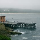 Tathra Wharf by Stephen  Shelley