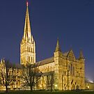 Salisbury cathedral at night by Colin Hollywood Photography
