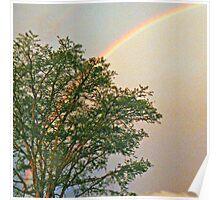 "Rainbow Over ""Jock Of The Bushveld Huts"" Poster"