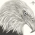 ACEO Piercing Stare - Bald Eagle by John Houle