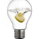 Lemon Bulb by Flying Funk