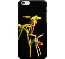 Diuris sulphurea iPhone Case/Skin