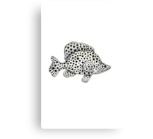 Panther grouper  Canvas Print