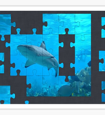 shark puzzle Sticker