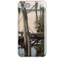 The St. Johns River at Dusk iPhone Case/Skin