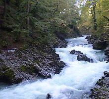 Vintgar Gorge, Slovenia by oscars