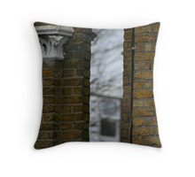 two worlds - a clear divide? Throw Pillow