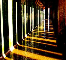 Shadows and Light by Paul Reay