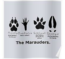 Marauders Animagus Footprint  Poster