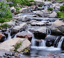 Mount Rainier's Myrtle Falls by Nicole Petegorsky