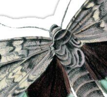 antique typographic vintage moth Sticker