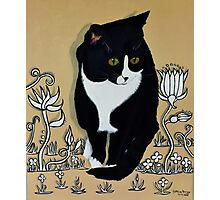 Tuxedo Cat... Photographic Print