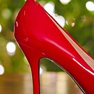 The Christmas Shoe by Maria Dryfhout