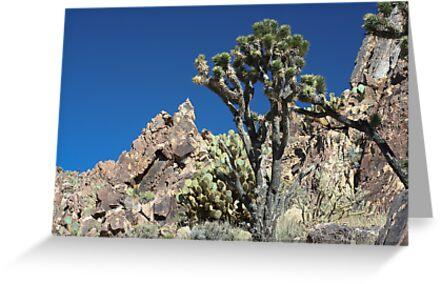 Kessler Peak, CA by Chris Clarke