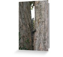 goanna up tree Greeting Card
