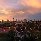 view to Sydney over paddo by barnesy64