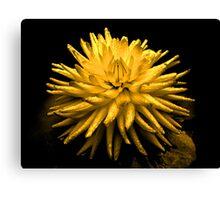 Soul flower's - Jealousy in Love Canvas Print