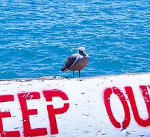Keep Out by ZipNip