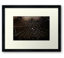 Deliquescence Framed Print