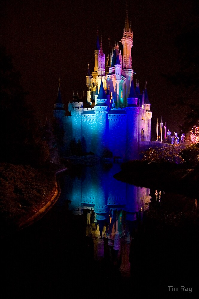 Magic Kingdom Reflections by Tim Ray