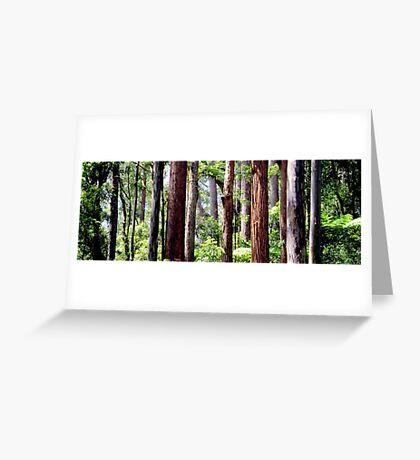 Coastal Rainforest Greeting Card