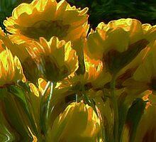 high gloss by Linda Sannuti