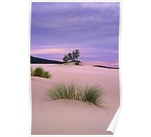 Barracoota Dunes Poster