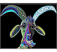 CRAZY GOAT on Black Background Photographic Print