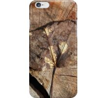 Beauty Of A Leaf iPhone Case/Skin