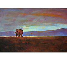 Ngorongoro Sunset Photographic Print